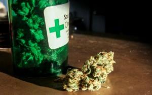 medical-marijuana-bud