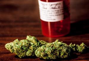 Blueberry Cookie Marijuana Buds