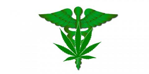 ama supports medical marijuana