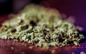 Amsterdam OG Marijuana