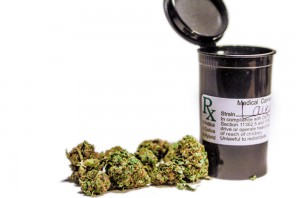 Lavender-marijuana-3