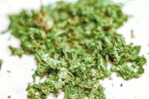 marijuana kills cancer