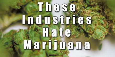 Dr Durban Marijuana Drink - Review - 420Resource