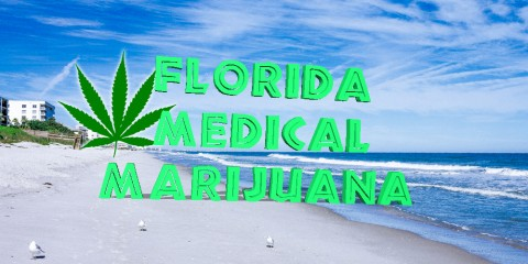 Florida Medical Marijuana