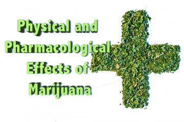 effects of marijuana