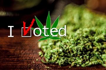 vote-for-legalization